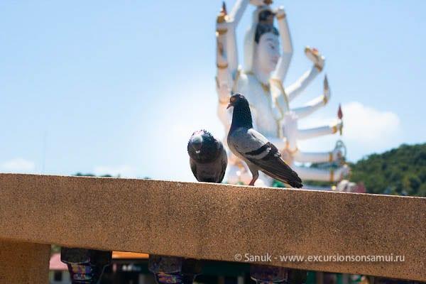 Храмовый комплекс Wat Plai Laem, Koh Samui