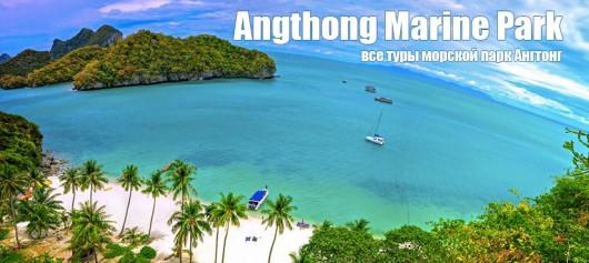Туры в морской парк Ангтонг