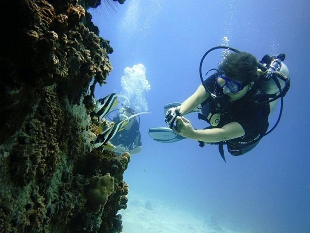 Приватные дайвинг-туры, остров Самуи, Таиланд