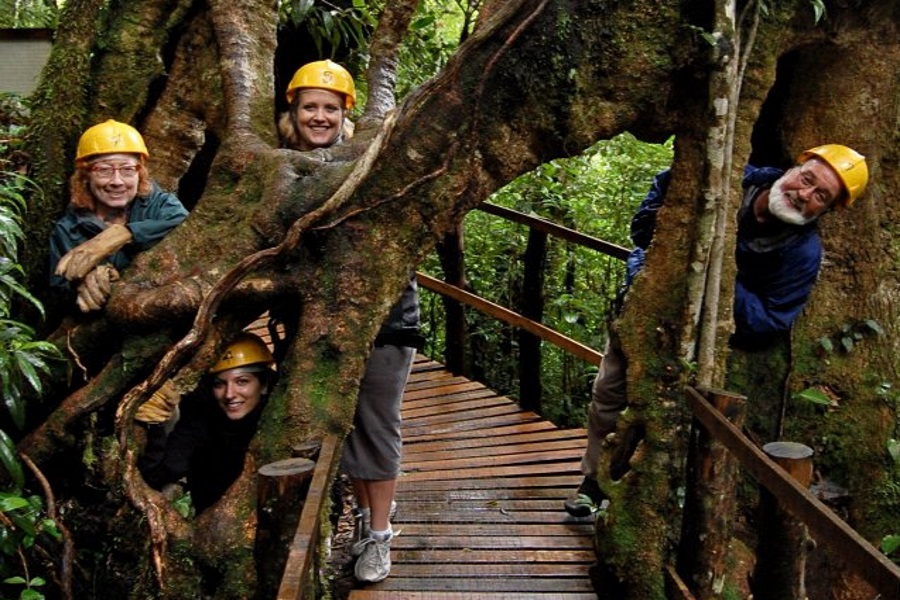 Canopy adventure, остров Самуи, Таиланд