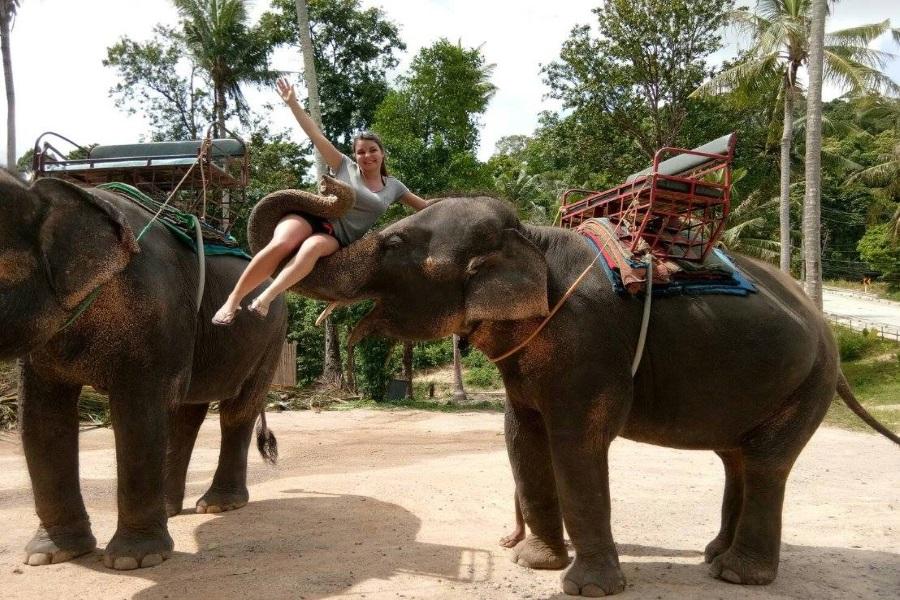 Бюджетный сафари-тур по о. Панган, остров Самуи, Таиланд