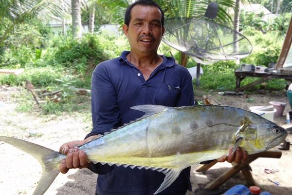 Рыбалка и круизы с Пангана, остров Самуи, Таиланд