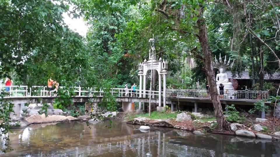 Пешие походы по горным джунглям острова с гидом, остров Самуи, Таиланд