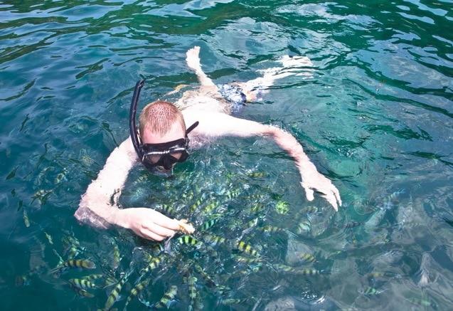 Тур на Ко Тао «Пять звёзд», остров Самуи, Таиланд