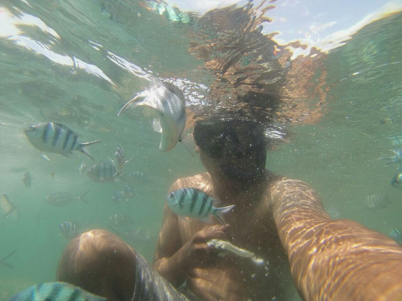 Приватные круизы и рыбалка на лонгтейле на острова Тан, Мадсум, Пять Сестер с юга Самуи, остров Самуи, Таиланд